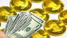 دلار به جاده افزایشی بازگشت / تمایل مردم به خرید سکههای کوچک