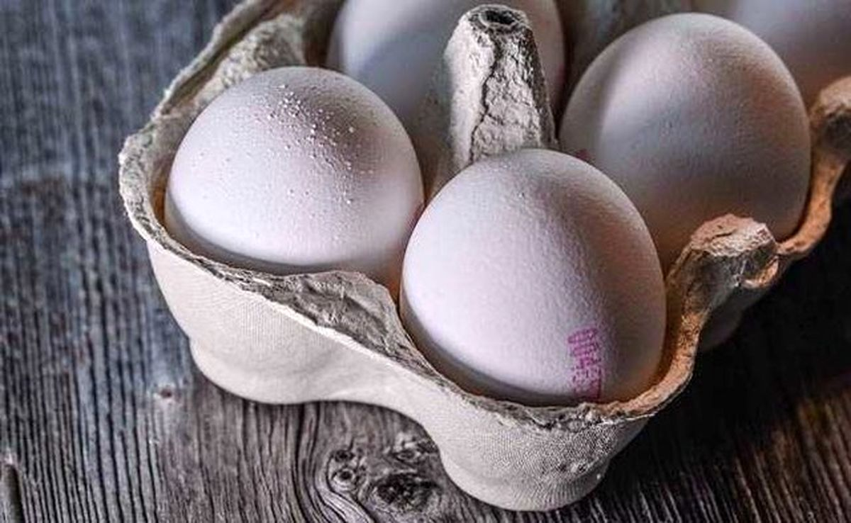 هماهنگی برای عرضه تخممرغ در میادین میوه و ترهبار