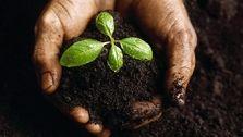 خاک کشاورزی تاکنون قاچاق نشده است