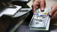 سودجویان بازار ارز به دنبال اجاره حساب بانکی دیگران/ تلاش برای غیرقابل ردیابی کردن گردش مالی