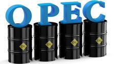تولید نفت اوپک 220 هزار بشکه افزایش یافت