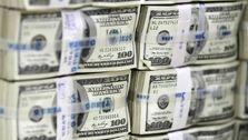 فقط بانک مرکزی از نرخ تعادلی ارز خبر دارد