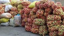 واردات آناناس، انبه و موز منوط به صادرات سیب درختی شد