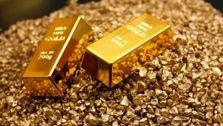 احمدی عنوان کرد: قیمت طلا و سکه در بازار به نسبت رو گذشته اندکی افزایش یافت