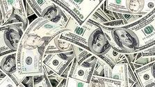 16 گامی که برای دریافت ارز از نیما باید برداشت