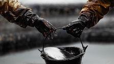 افزایش قیمت نفت از سر گرفته شد/ رشد یک درصدی قیمت در بازار جهانی