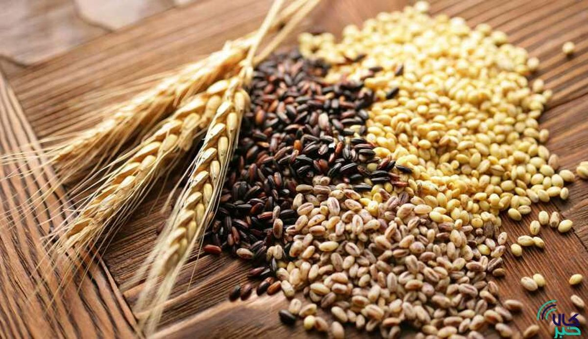 قیمت محصولات غذایی در بازارهای جهانی رشد کرد؛ گندم در صدر افزایش قیمت