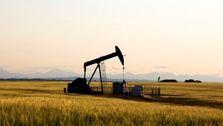 موج سواری قیمت نفت روی توافق تجاری آمریکا و چین
