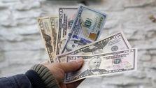 فقدان تقاضای ارز در بازار متشکل