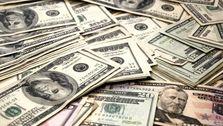 اختصاص 8 میلیارد دلار ارز دولتی به کالاهای اساسی