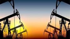 تولید نفت اوپک در پایین ترین سطح ۴ سال اخیر