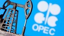 کاهش صادرات نفت اوپک پلاس رکورد زد