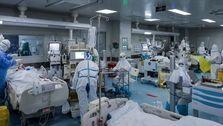 شناسایی ۲۲۳۸ مورد جدید ابتلا به کووید ۱۹ در کشور/فوت ۷۸ بیمار در ۲۴ ساعت گذشته