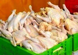 قیمت هر کیلو مرغ به ۲۱ هزارتومان رسید