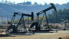 درخشش نفت در آخرین هفته سال میلادی