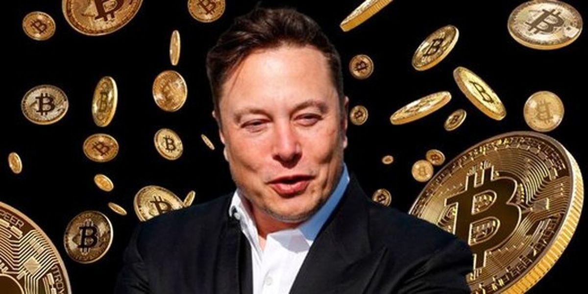 سقوط رتبه ایلان ماسک در فهرست ثروتمندترین افراد دنیا