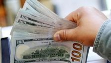 درآمد ارزی دولت از 112 به 12 میلیارد دلار کاهش یافته است