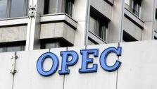بلاتکلیفی بازار نفت در آستانه نشست اوپک