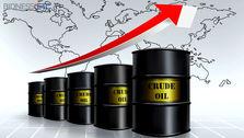 قیمت هر بشکه نفت به 69.84 دلار رسید
