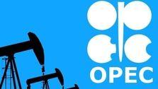 تاثیر ناچیز کاهش قیمت نفت آمریکا بر سبد اوپک