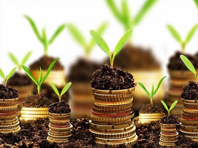 پرداخت تسهیلات ۴ میلیاردی برای اشتغالزایی روستایی