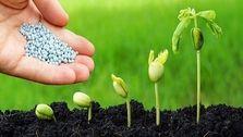 بخش کشاورزی فاقد فناوری مدیریت پایدار و افزایش بهرهوری است