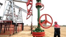 روسیه تولید نفت خود را افزایش می دهد