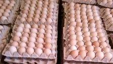 هر شانه تخم مرغ ۱۹ هزار و ۸۰۰ تومان
