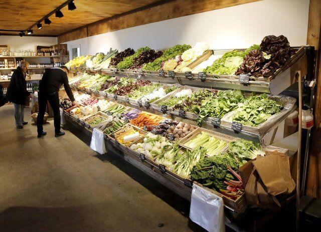 قیمت جهانی مواد غذایی بالا رفت