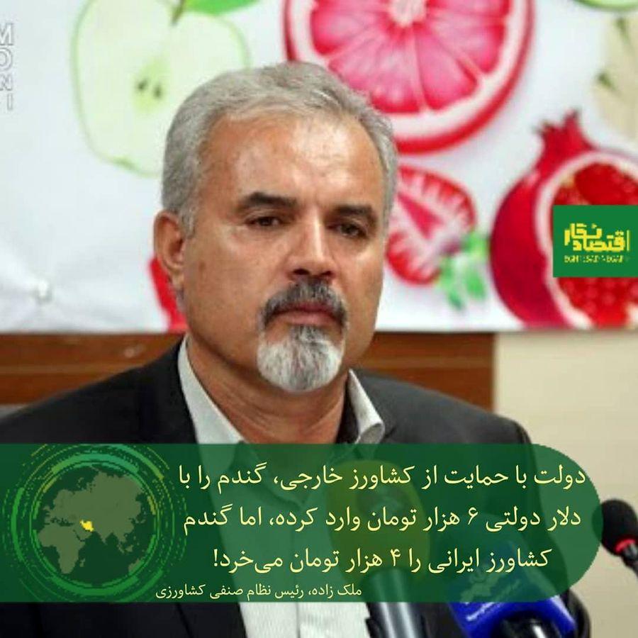 دولت گندم را از کشاورز خارجی با دلار دولتی؛ ۶ هزار تومان و از کشاورز ایرانی ۴ هزار تومان میخرد