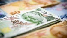ریزش بی سابقه و سنگین واحد پول ترکیه