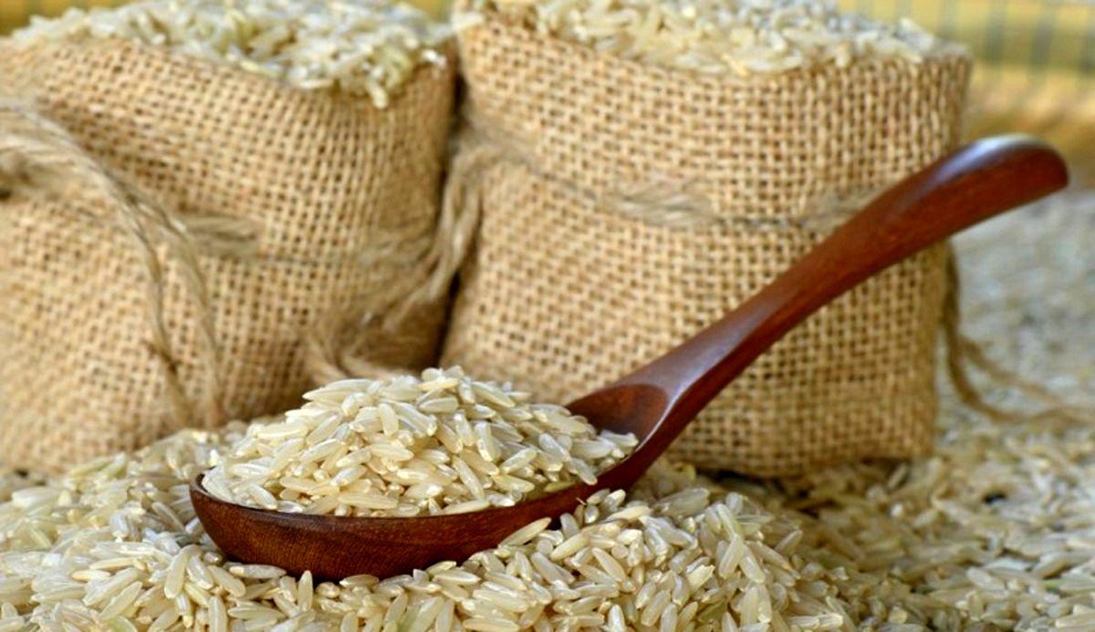 ترخیص ۱۵ هزار تن برنج از امروز/ مرغ و تخم مرغ به اندازه کافی وارد کشور شده است